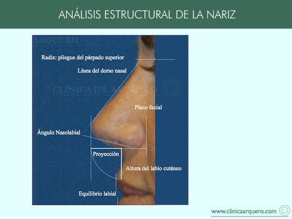 analisis_estructural_nariz2